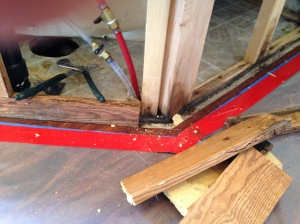 Wood structures with black mold